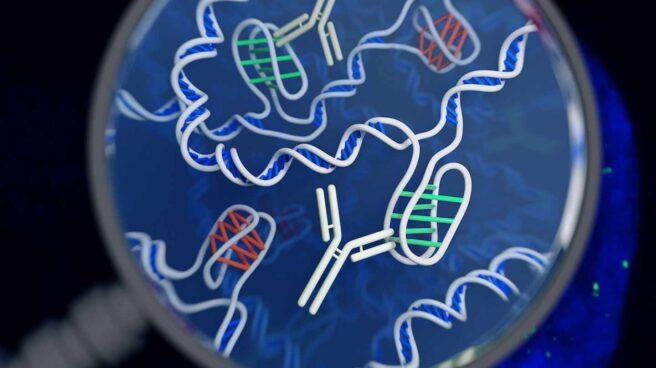 Nuevas formas de ADN