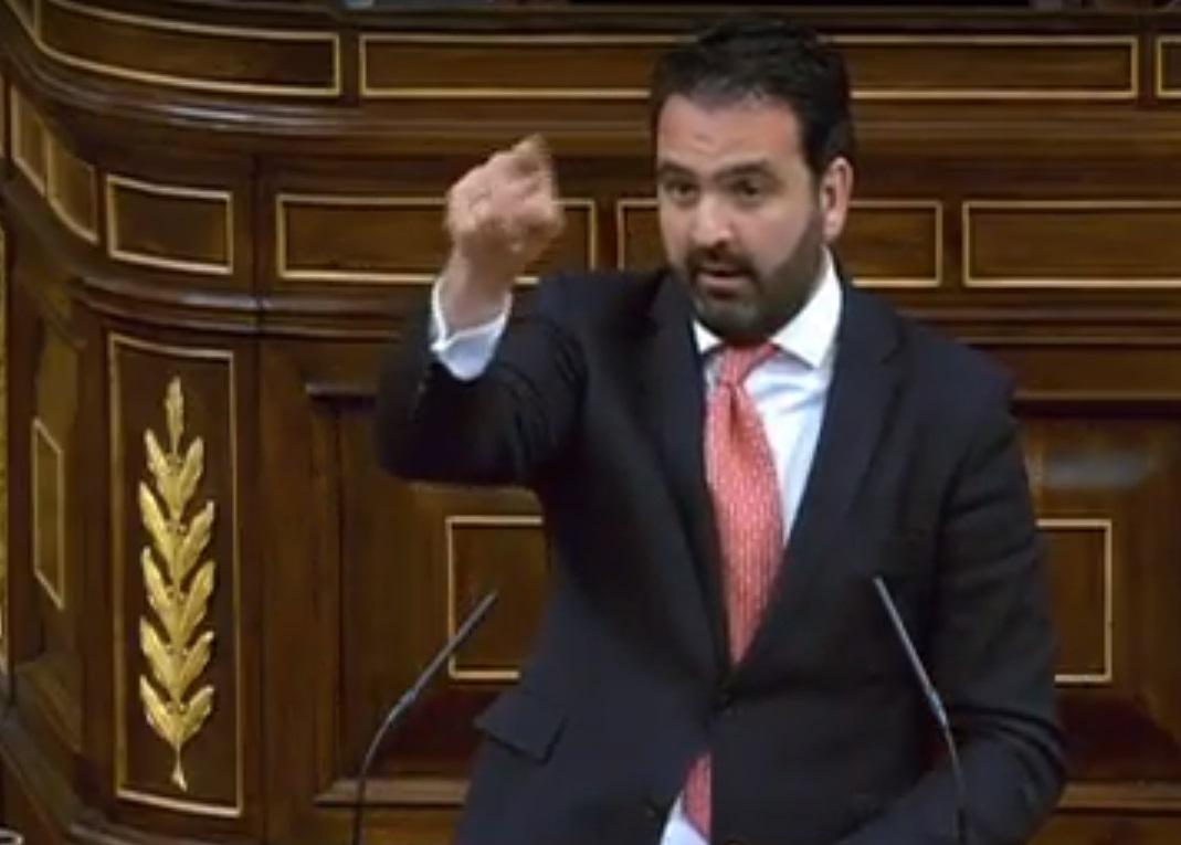 El diputado Iñigo Alli, en el Congreso.