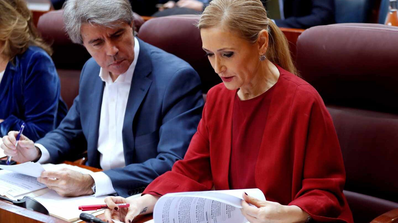 Cristina Cifuentes, en la Asamblea de Madrid.