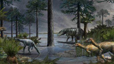 Los dinosaurios aparecieron 'de golpe', tras una época de lluvias