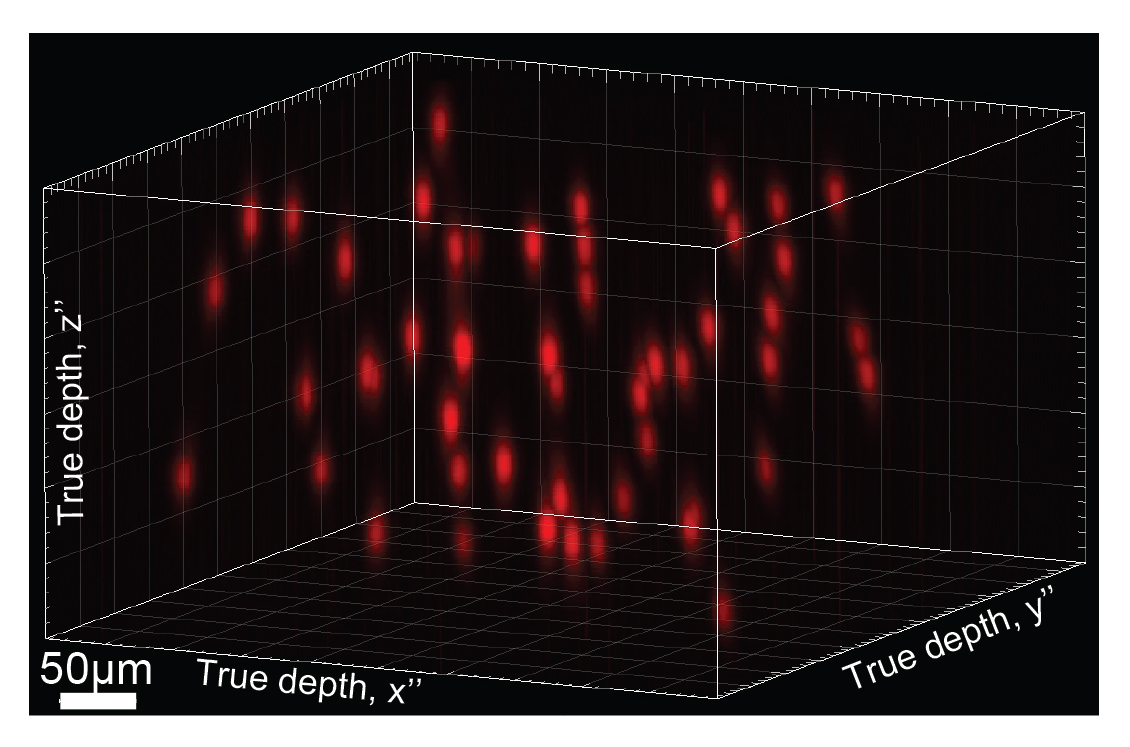 Holograma para editar cerebros