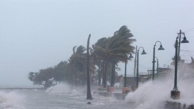 Las catástrofes naturales causaron pérdidas récord a las aseguradoras en 2017.