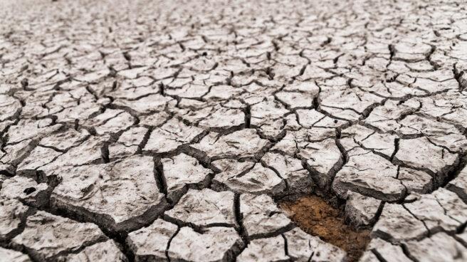 Suelo cuarteado en Alicante por la sequía