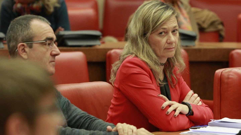 Victoria Rosell, en el Congreso.