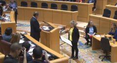 Mirella Cortés, durante el juramento de su cargo en el Senado.