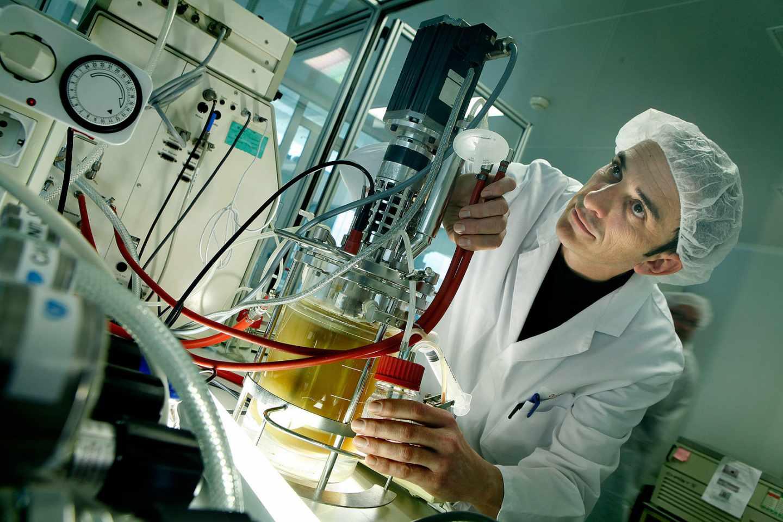 Pruebas de transformación de biomasa en bioproductos. Foto cedida por AINIA