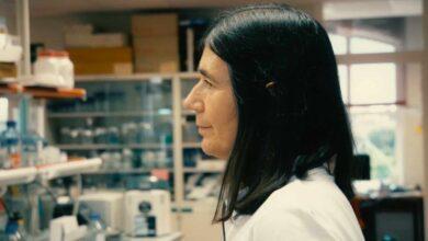 Un laboratorio para frenar el envejecimiento