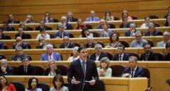 Sánchez se estrena en el Senado culpando al PP del independentismo y pidiéndole lealtad