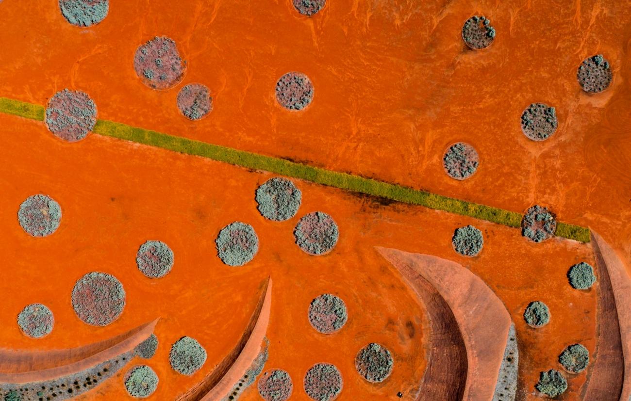 3. 'Jardín de arena roja' de Peter Virag.