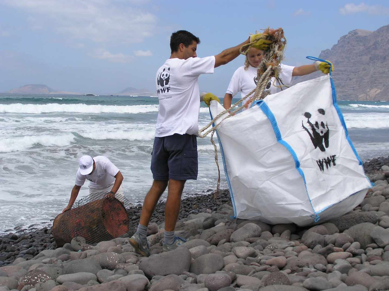 Fotografía: Alexis Rivera-WWF