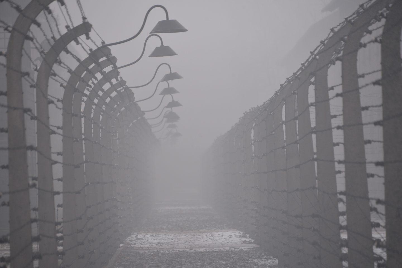 Postes y alambrada en Auschwitz I Foto por Pawel Sawicki ©Auschwitz Birkenau State Museum Musealia.