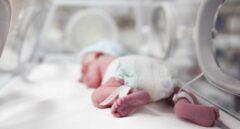 Bebé prematuro en una incubadora.