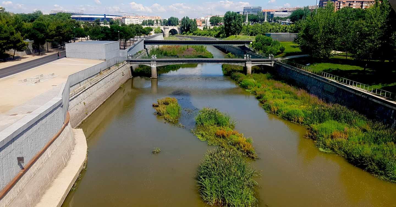 Tramo naturalizado del Manzanares, a la altura del Puente de Toledo
