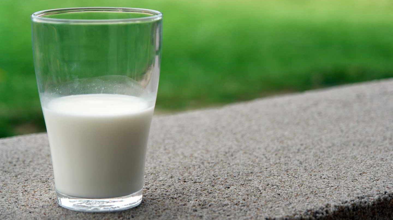 La OCU alerta del riesgo sanitario elevado que entraña consumir leche cruda.