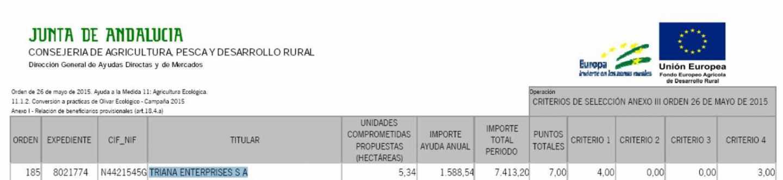 Publicación de la concesión de una ayuda a Triana Enterprises en el Boletín Oficial de la Junta de Andalucía (BOJA).