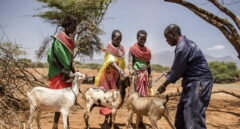 Invertir en la intervención temprana en las emergencias humanitarias es rentable