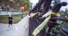 Lazos amarillos.