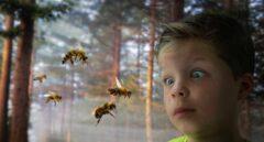 Cómo prevenir las picaduras de los mosquitos y otros (inesperados) insectos