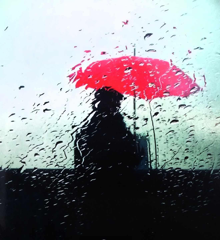 Imagen de portada de la novela 'Patria' del escritor donostiarra Fernando Aramburu.