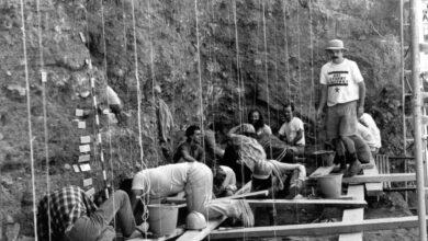 Atapuerca, 40 años haciendo prehistoria