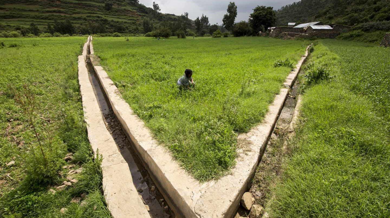 Proyecto de irrigación en Etiopía para ayudar a pequeños productores a adaptarse al cambio climático durante las estaciones secas. FAO/IFAD/WFP/Petterik Wiggers