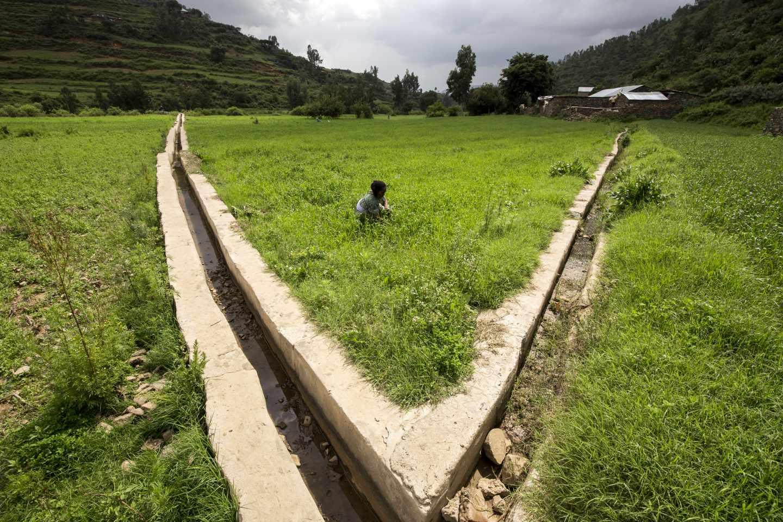 Proyecto de irrigación en Etiopía para ayudar a pequeños productores a adaptarse al cambio climático. FAO/IFAD/WFP/Petterik Wiggers