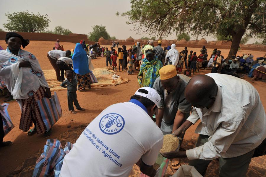Mujeres nigerianas recibiendo semillas de mijo y judías verdes distribuidas por la FAO. ©FAO/Pius Ekpei