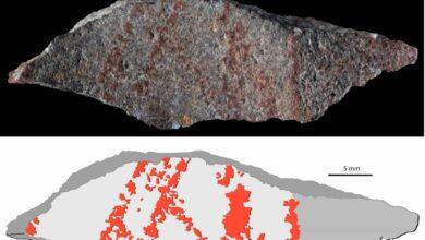 El primer dibujo de la 'humanidad' tiene al menos 73.000 años