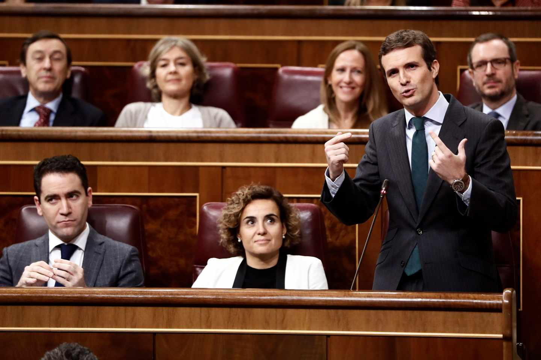 Pablo Casado, en el Congreso.