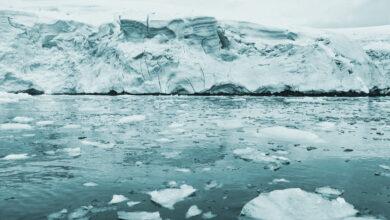 El ritmo de deshielo marino antártico anticipa mínimo sin precedentes