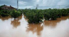 Cambio climático y fenómenos meteorológicos extremos en España