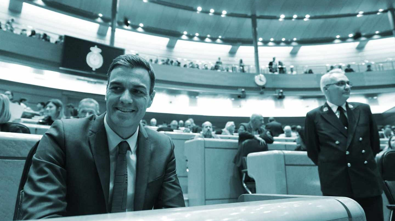 El presidente del Gobierno, Pedro Sánchez, durante la sesión de control del Senado.