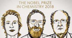 Nobel para los imitadores de la evolución de las especies a nivel microscópico
