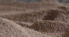 Cien mil hogares al calor del hueso de aceituna