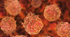 Célula cancerígena.