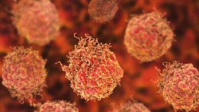 Desarrollan una nueva inmunoterapia para vencer al cáncer