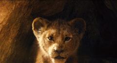 Primeras imágenes de 'El Rey León', la nueva película de acción real