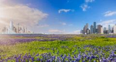 Nace 'Renfe of America', la filial para ganar el AVE privado de Texas de 12.000 millones
