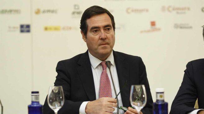 Antonio Garamendi, nuevo presidente de CEOE.