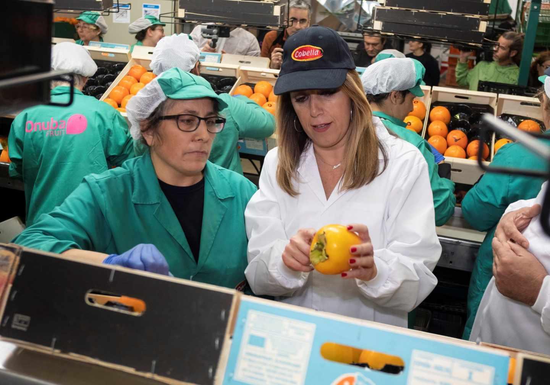 Susana Díaz visita una cooperativa agrícola en Lepe durante la campaña electoral.