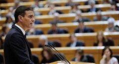 Pedro Sánchez durante su comparecencia en el Senado.
