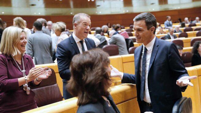 Pedro Sánchez este martes en el Senado