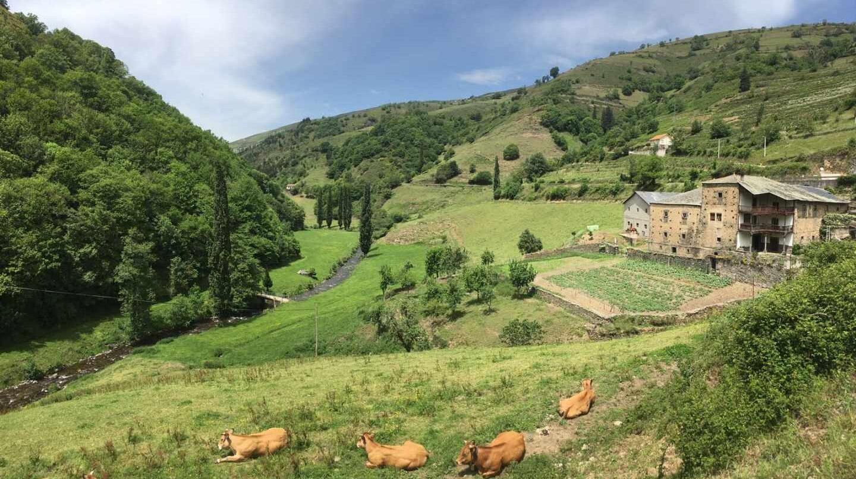 Cangas del Narcea, AsturiasCangas del Narcea, Asturias