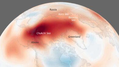 Los nueve puntos críticos del cambio climático que amenazan a la humanidad