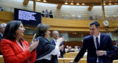 La ministra Delgado no recuerda si criticó a Pedro Sánchez antes de llegar al Gobierno