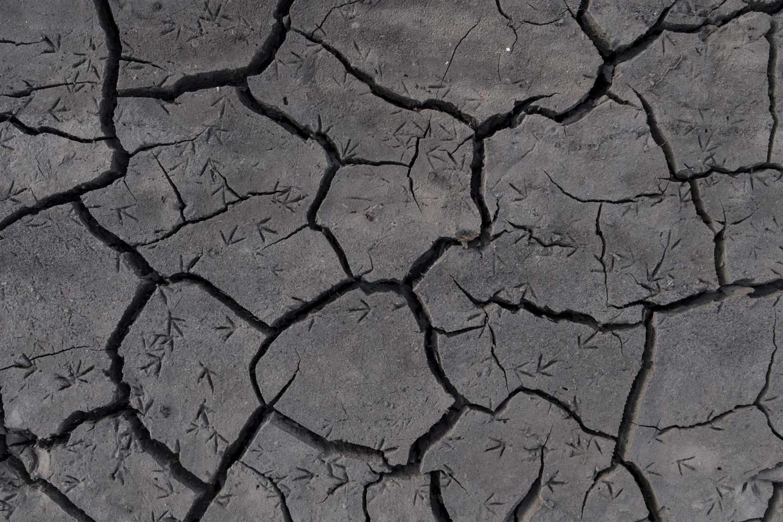 Un terreno agrietado por la sequía en la provincia de Orense.