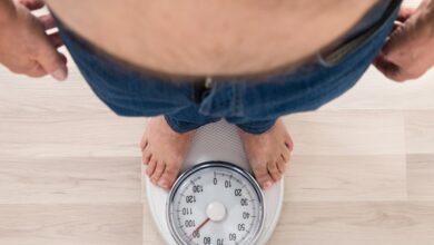Investigadores españoles descubren cómo evitar que el cuerpo acumule grasa