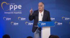 """El Bigotes acusa a González Pons de tener """"mando en plaza"""" en la financiación ilegal"""