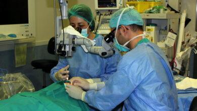 Dos pacientes de España e Italia reciben un riñón gracias al segundo trasplante cruzado