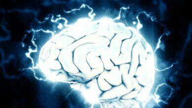 El reto de adelantarse al Alzheimer: para 2050 el número de enfermos se triplicará